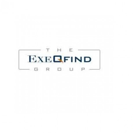 Logo The ExeQfind Group
